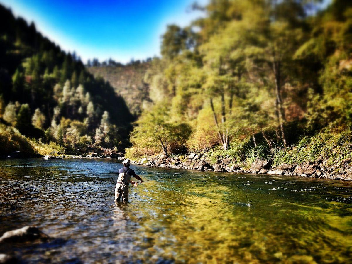 Amador fly fishers meeting and fly fishing faire in the for Trout fishing california