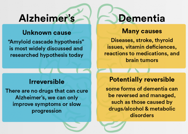 dementia vs alzheimer's | active aging | ledger.news