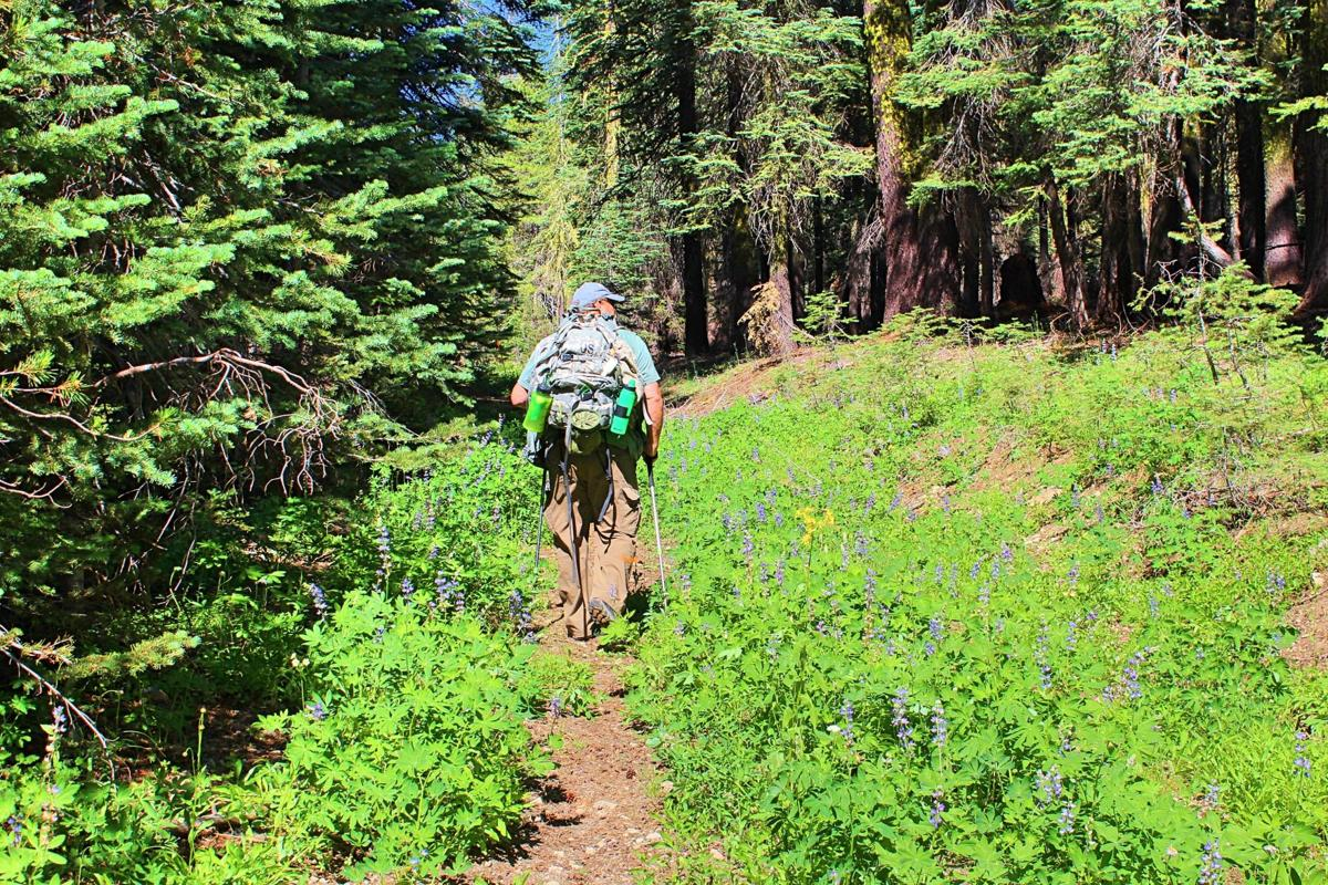 2. In this edition of Mother-Rucking, Dave Gebauer and Sarah Spinetta travelled upcountry in the Mokelumne Wilderness for a late summer hike and photography session of the still-blooming fields of wildflowers. Photo by Sarah Spinetta..jpg