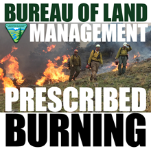 BLM Prescribed Burning
