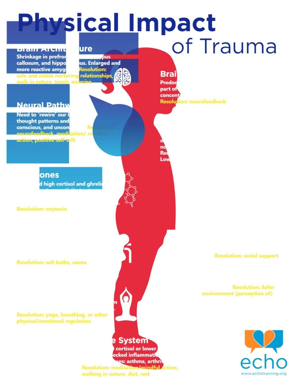 Physical-Impact-of-Trauma.pdf
