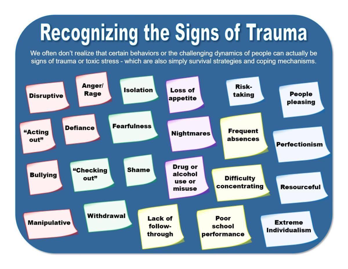 Recognizing Trauma 2.pdf