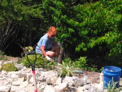 Mill Site Park renovation