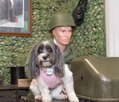 Lucy Veterans Services-1.jpg