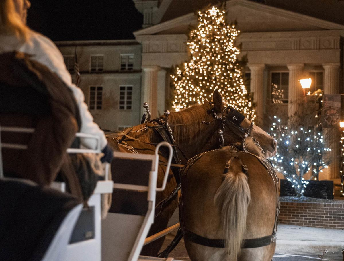 Carriage Horses-2.jpg