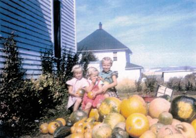 Blast from the Past / 1954: A bumper squash harvest in Cottonwood