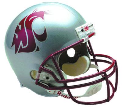 Cougar helmet