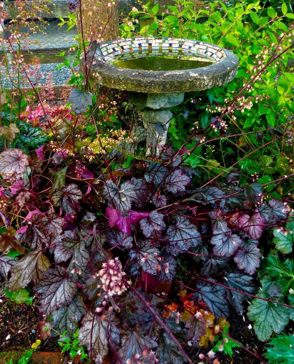 Season's gardening trends tend toward the sustainable