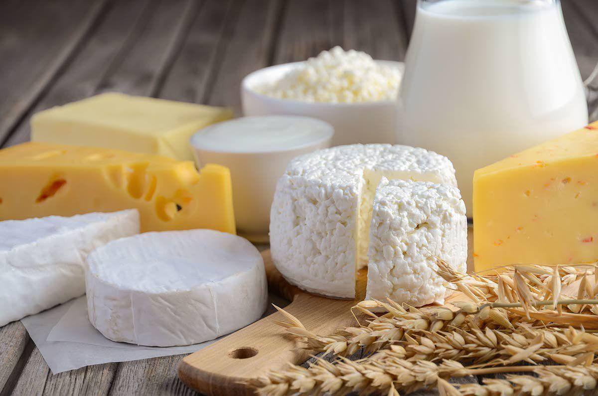 Studies show it's OK to eat whole milk dairy foods