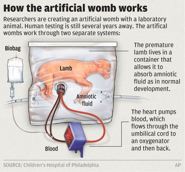 Hope for preemies as artificial womb helps tiny lambs grow editors hope for preemies as artificial womb helps tiny lambs grow ccuart Gallery