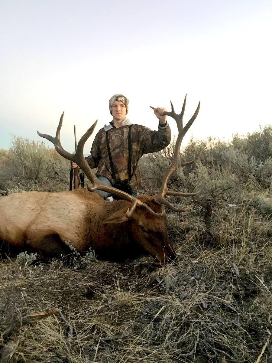 Officials offer up a  hopeful forecast for deer, elk seasons