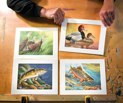 Swan song in duck stamps' near future?