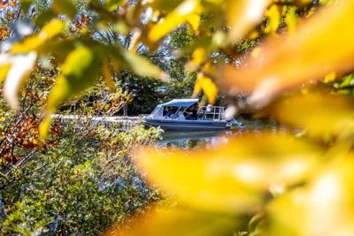 Autumn arrives, wet weather coming