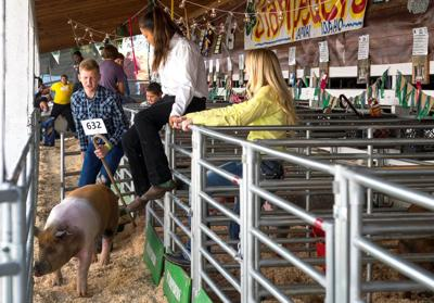 Fair continues today in Lewiston