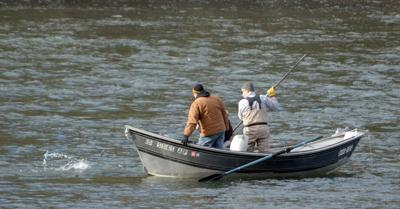 Outfitters, guides call out legislators on salmon recovery