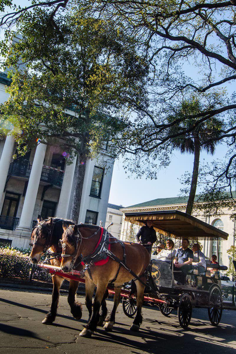 A visit to historic Savannah