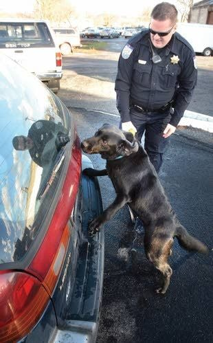Reasonable suspicion must come before calling dog to search
