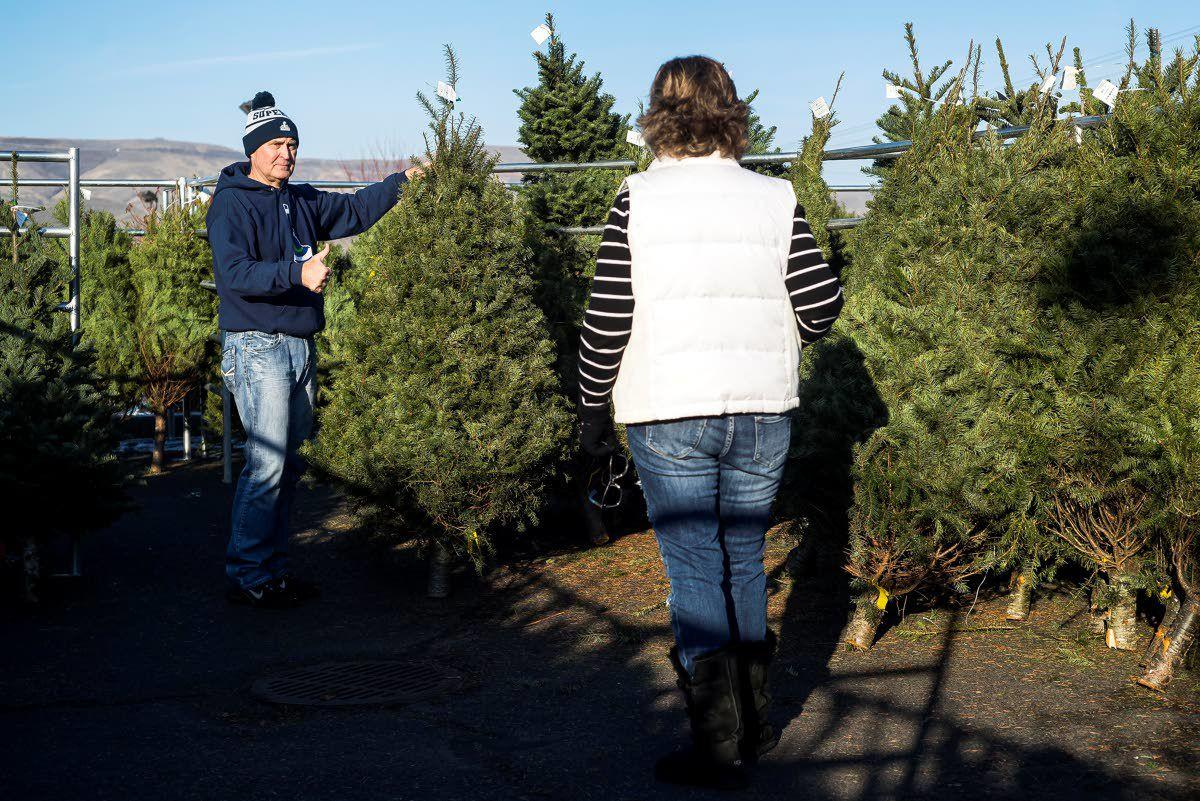 Tree sale part of Christmas tradition