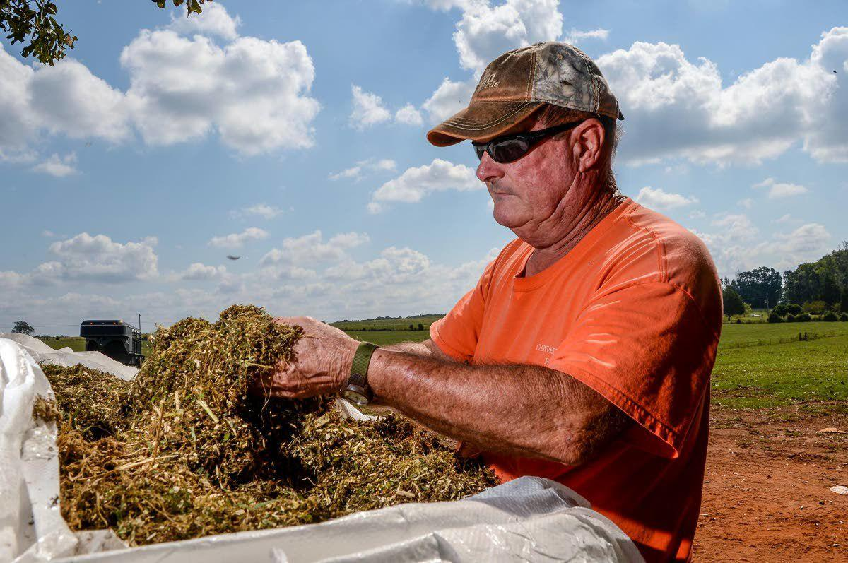 Growing pains for new farming crop