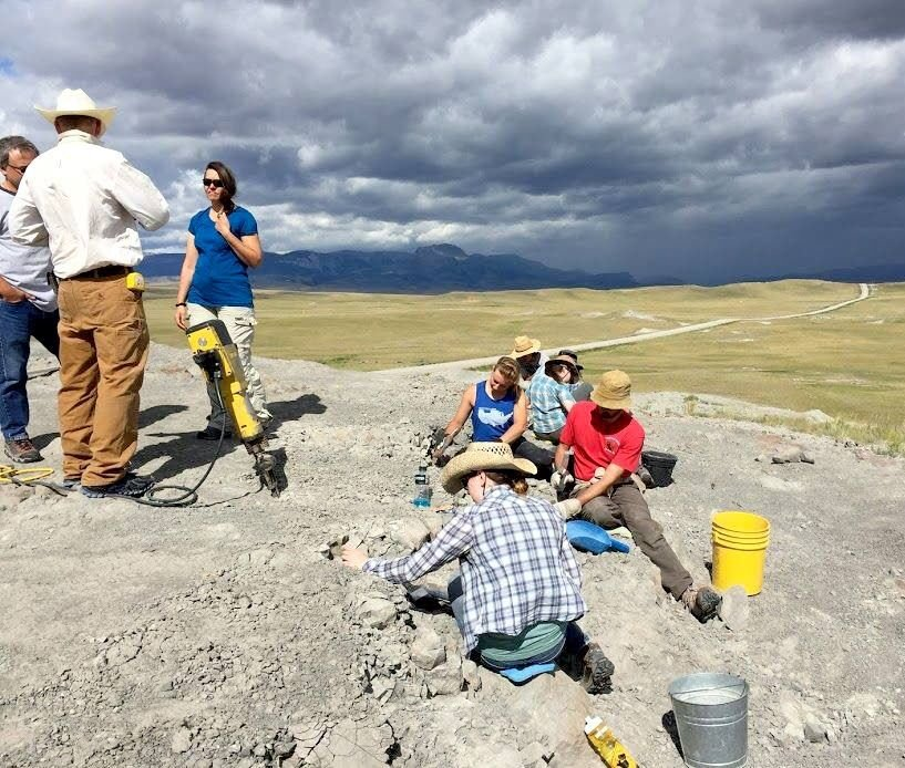 Fossils tell the tale of ancient mammals' sociability