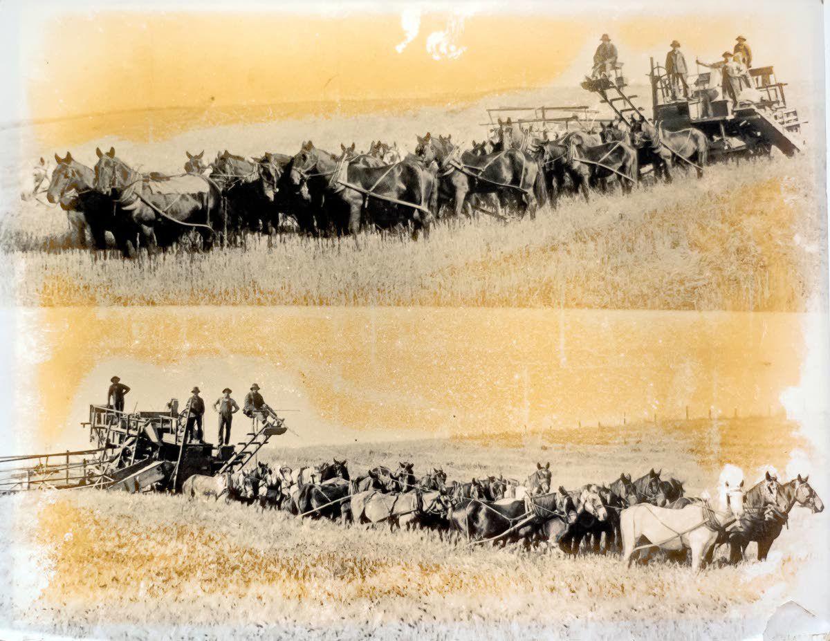 Five generations of farming