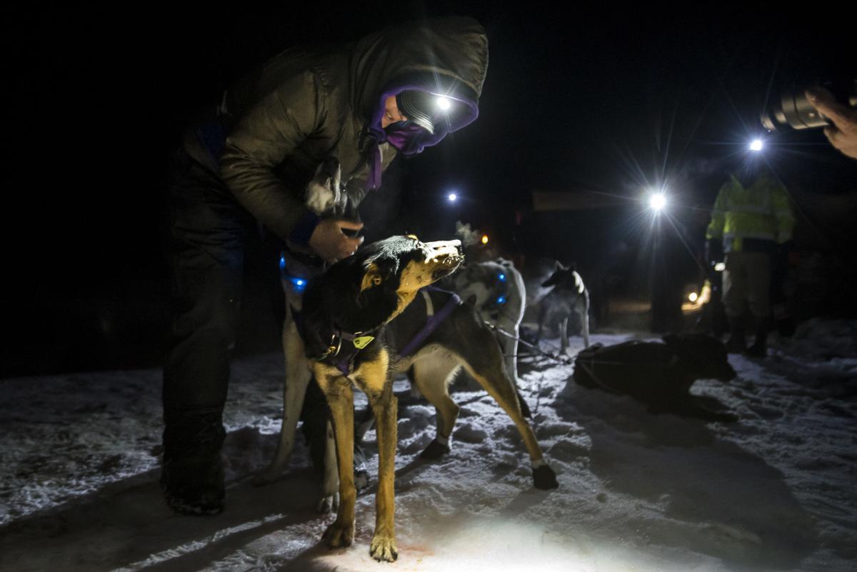 Idaho Sled Dog Challenge