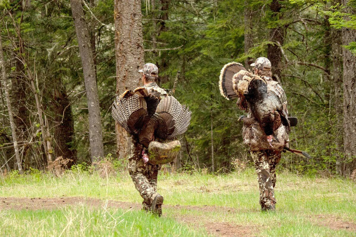 Gobs of gobblers