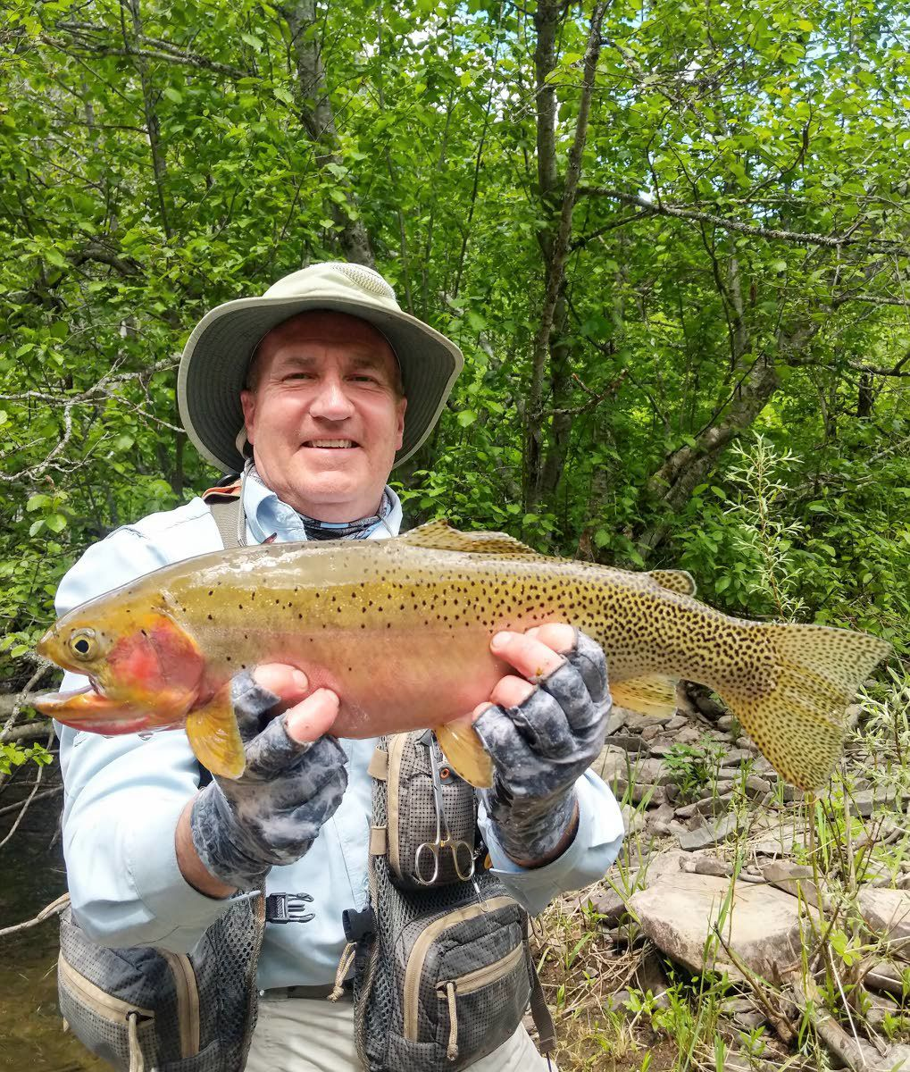 Record westslope cutthroat