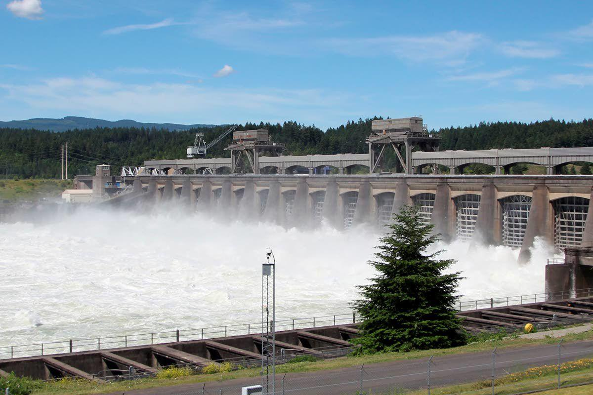 Tribes: Remove Columbia River dams