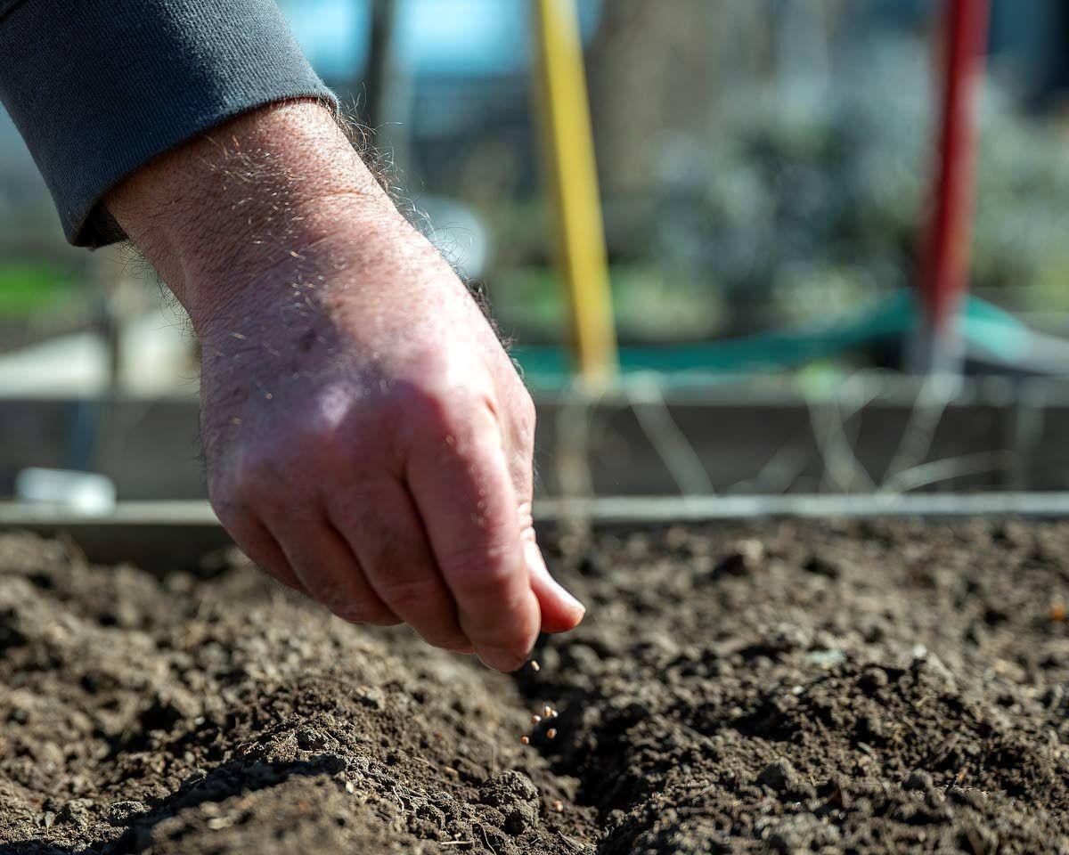Renewed interest in gardening expected togrow