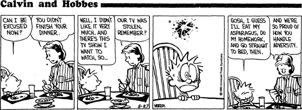 FB 05271994 Calvin and Hobbes.jpg