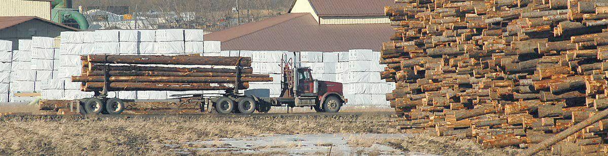 'It's a perfect storm for lumber demand'