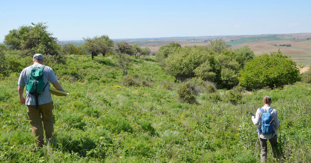 Palouse Prairie preservation moves closer