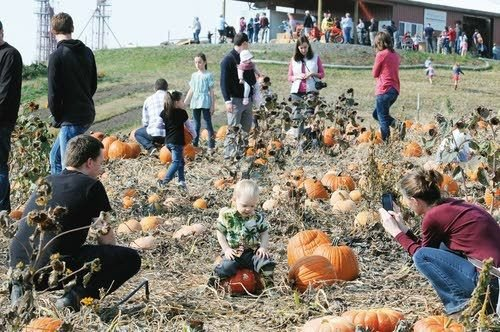 fall frolic northwest lmtribune com lewiston tribune