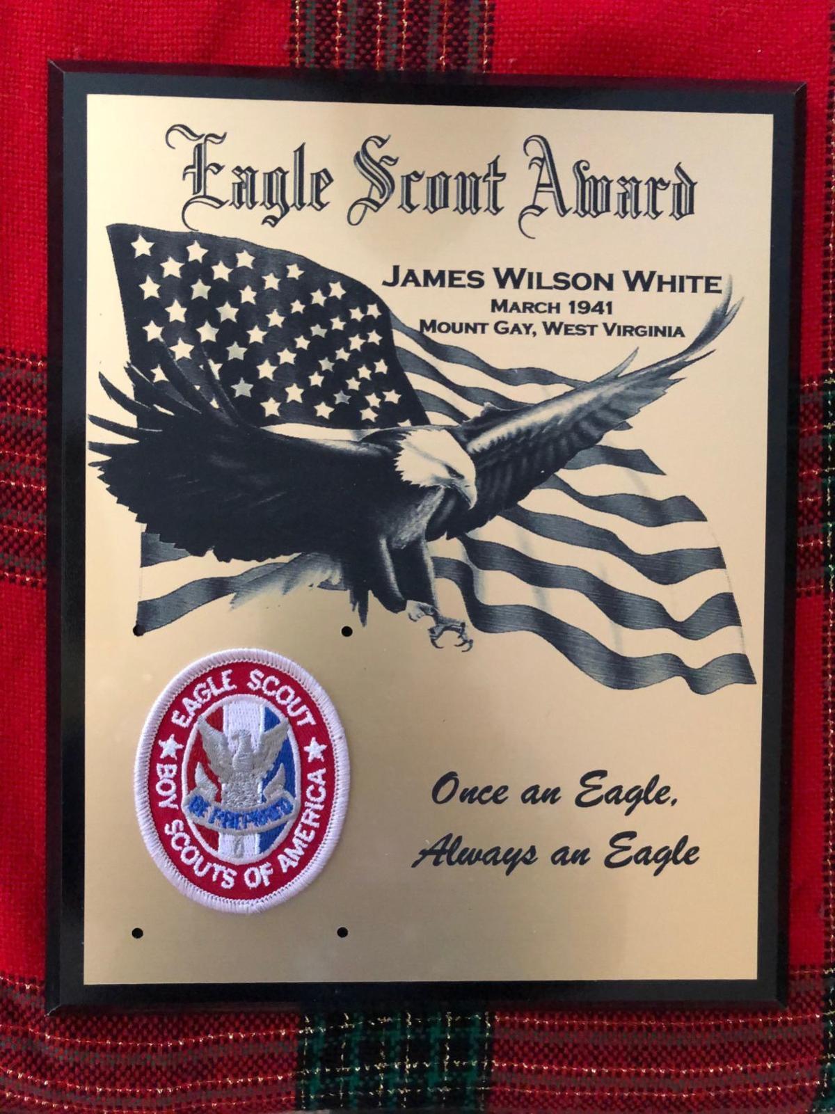 20200122-log-eagle-2.jpeg