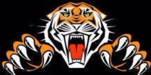 Chapmanville Tigers logo2.JPG