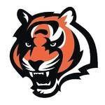 Chapmanville Tigers logo.jpg