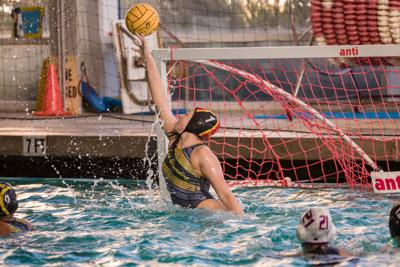 Gallagher water polo