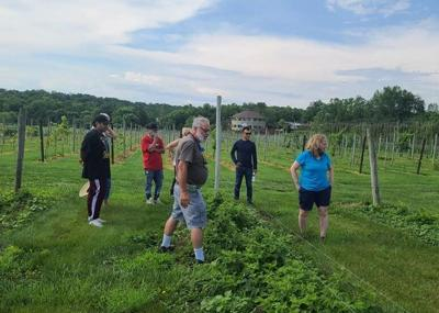 Fabbioli to launch a Loudoun Country Market to showcase local agribusinesses in September