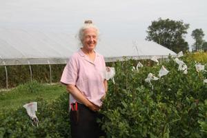 Greenstone Fields owners reflect on 'exploding' local flower movement