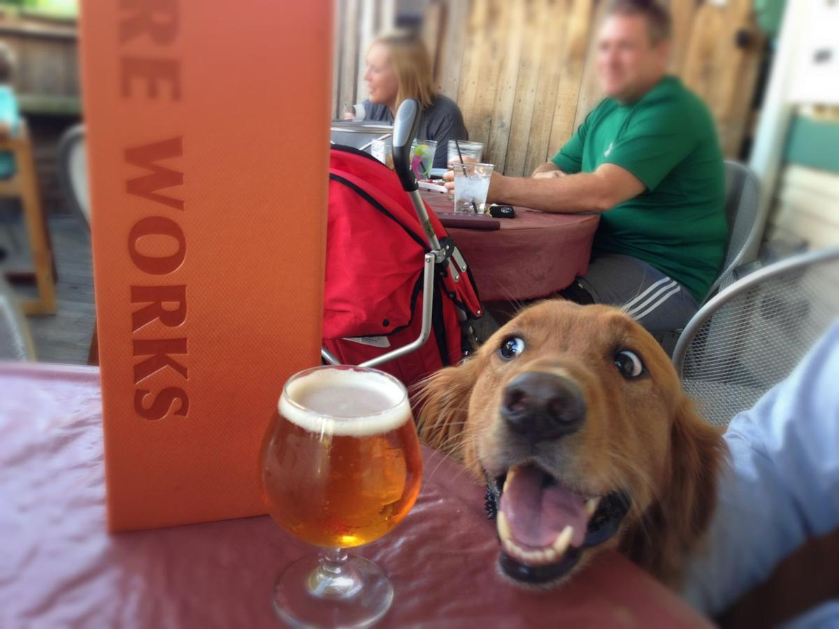 Pups on the patio enters fifth year at Fireworks Pizza