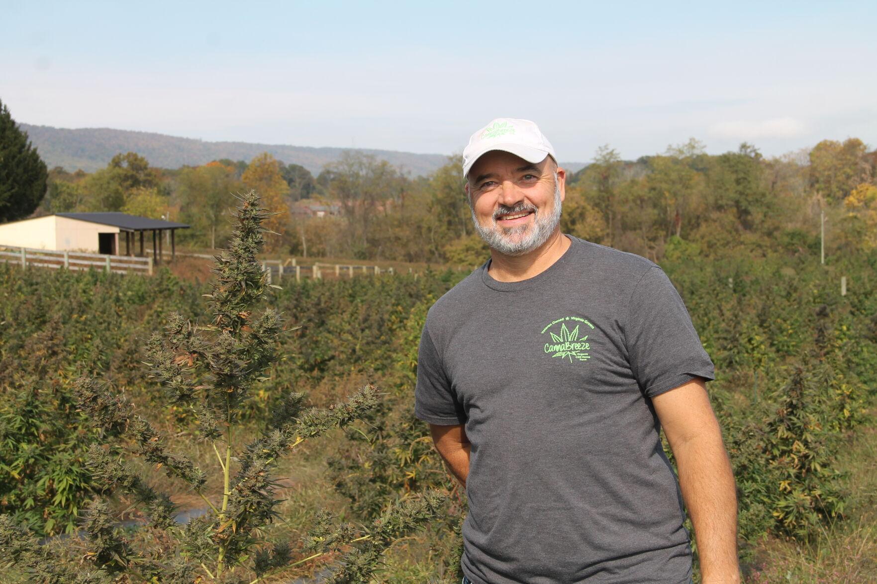 Loudoun S New Cash Crop Local Farmers See Opportunity In Growing Hemp Market News Loudountimes Com