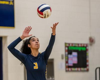 Loudoun County Sweeps Top Honors On Region 4c Volleyball Team Sports Loudountimes Com