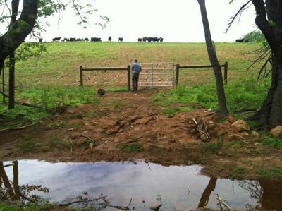 Loudoun County Farmer