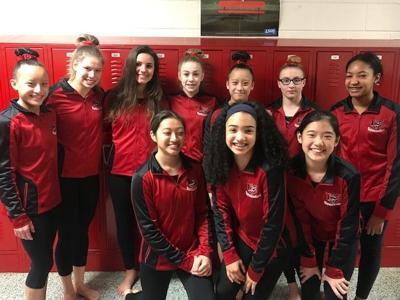 HHS gymnastics team