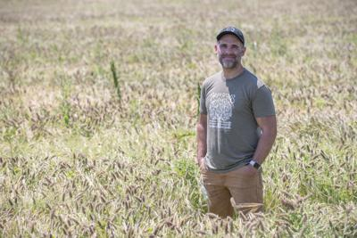 Brewery teams up with fellow farmers to brew a 100% Loudoun-sourced beer