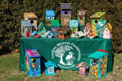 LWC birdhouse auction