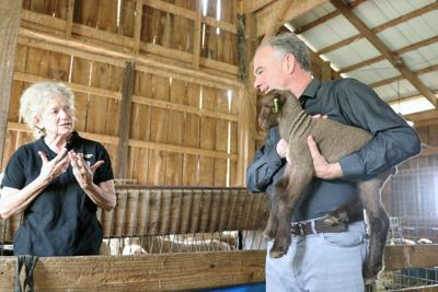 Kaine's Loudoun County visit | Black Sheep Farm 1