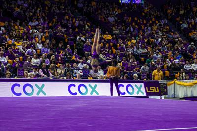 LSU Gymnastics Defeats The University of Kentucky