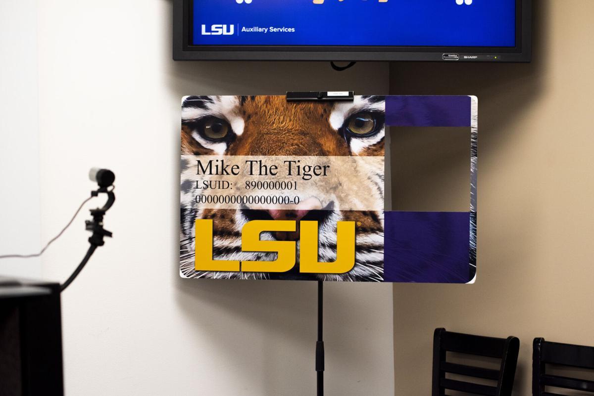 Tiger Card Office